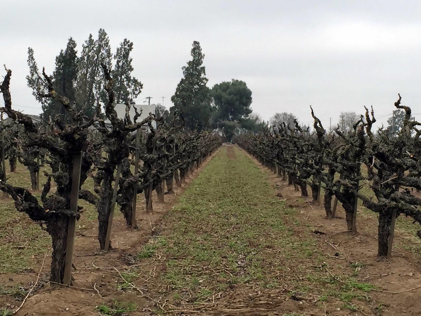 Harmony Wynelands Winery