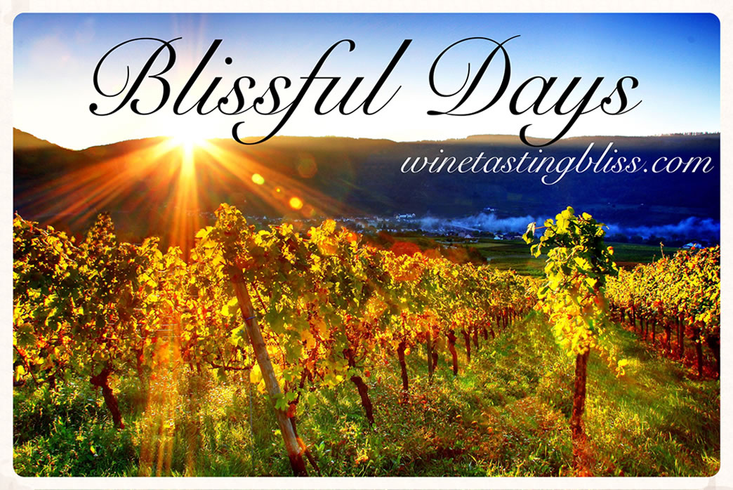 Blissful Days: National Cabernet Day