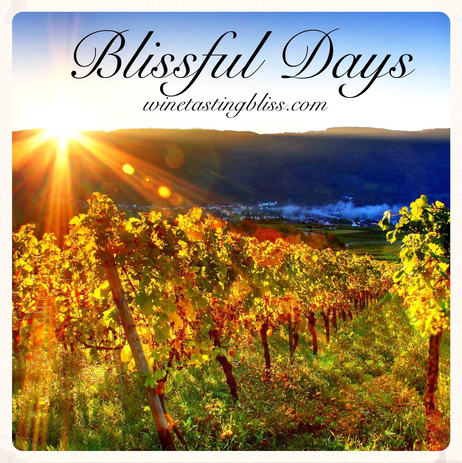 Blissful Days: Salami Day
