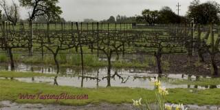 The Hanna Winery