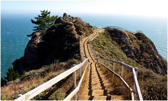 The Marin Beach Overlook