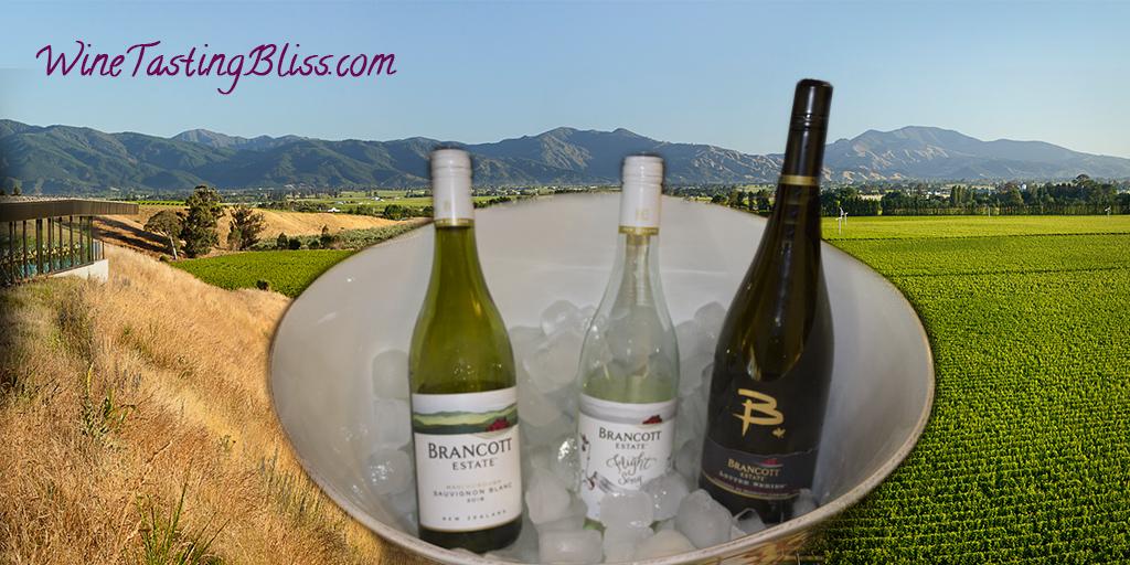 Discovering Brancott Estate Sauvignon Blanc