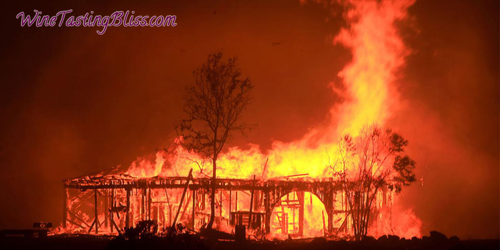 The Napa Fires