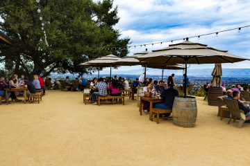 House Family Vineyards view