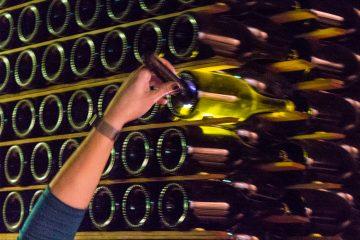 Schramsberg Vineyards lees