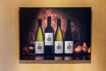 Occasio winery painting