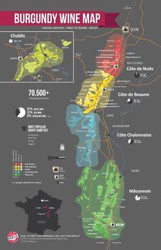 Burgundy wine region by Wine Folly