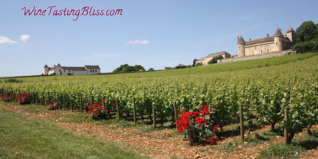 Wines of Burgundy France
