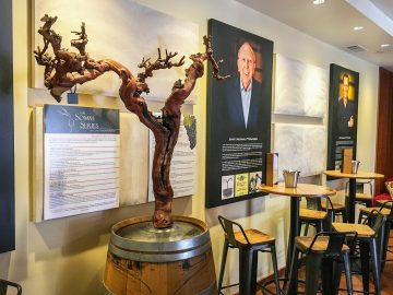 concannon tasting room artwork