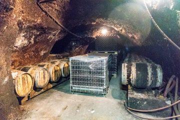 chateau du petit thouars cave