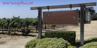 Harney Lane Winery at Harvest Time