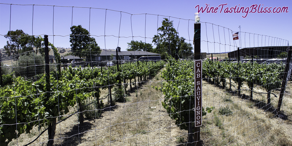 Eagle Ridge Vineyard Launches Their First Rosé