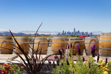 San Franscisco Skyline from Urban Legend Patio