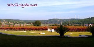 Turkish Wines and Aegean Region