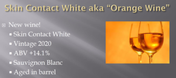 Virtual Europe Orange Wine