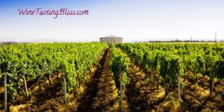 Apulia wine region
