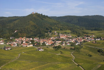Stintzi Landscape
